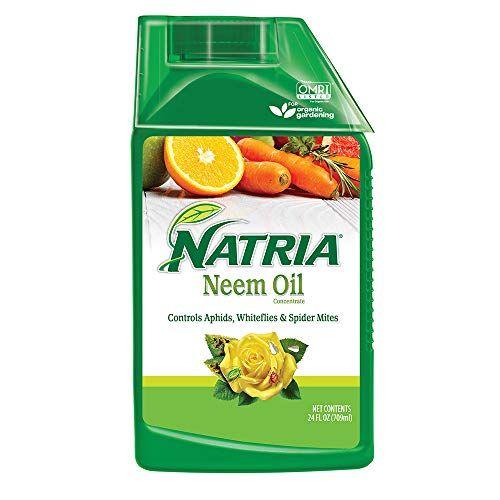 Natria 706240A Neem Oil Pest And Disease Control, 24-Ounce