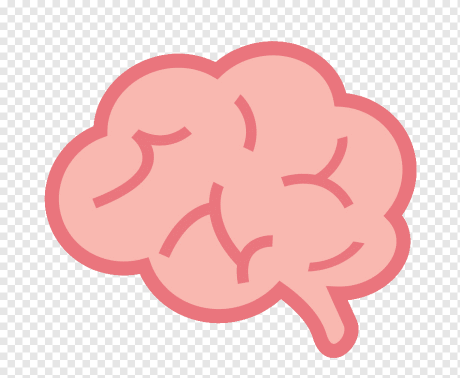 Pin By Ambarmiraflowers On Drawing In 2021 Cartoons Png Brain Drawing Brain Illustration