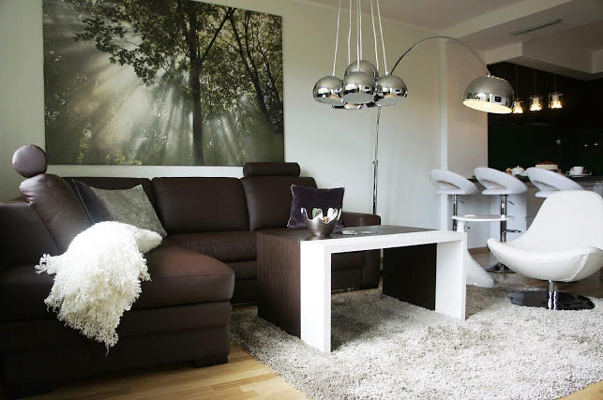 apartment design, brown sofa in single white chair on white fur