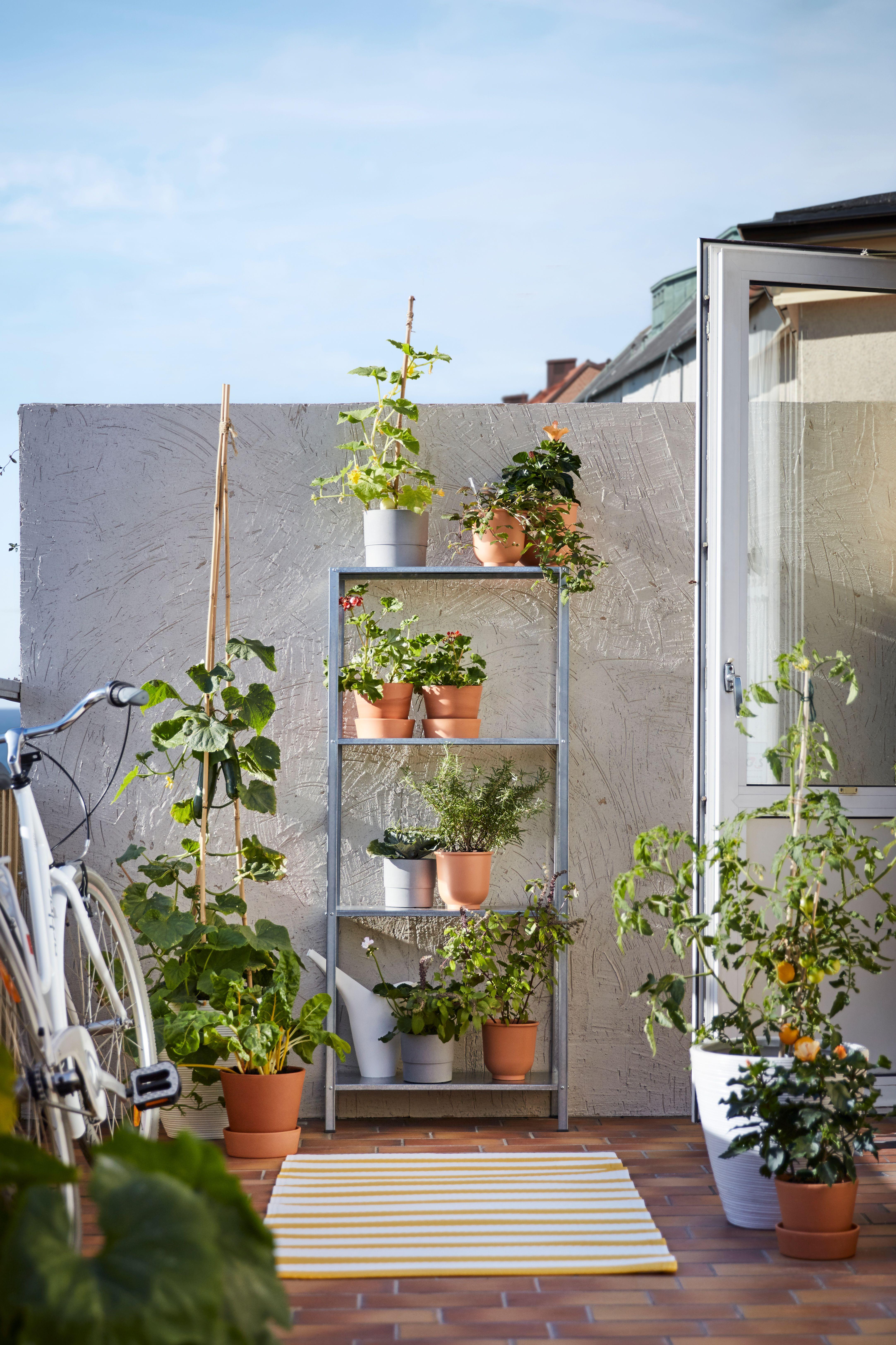 Hyllis Regal Drinnen Draussen 60x27x140 Cm Ikea Deutschland Terrassenpflanzen Hintergarten Innengarten