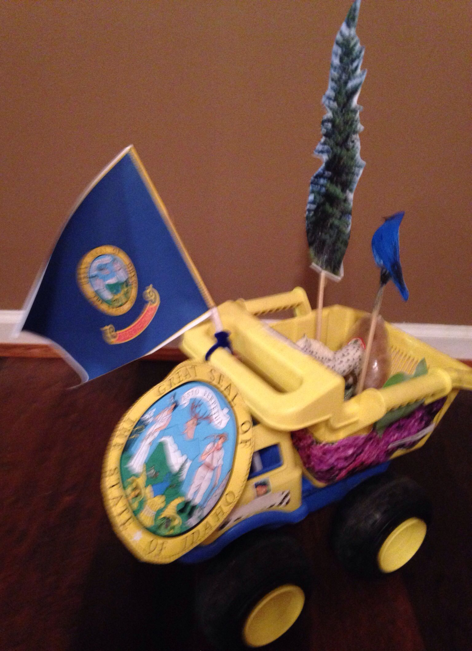 Idaho state float project #MyOwnPrivateIdaho | Learning ...
