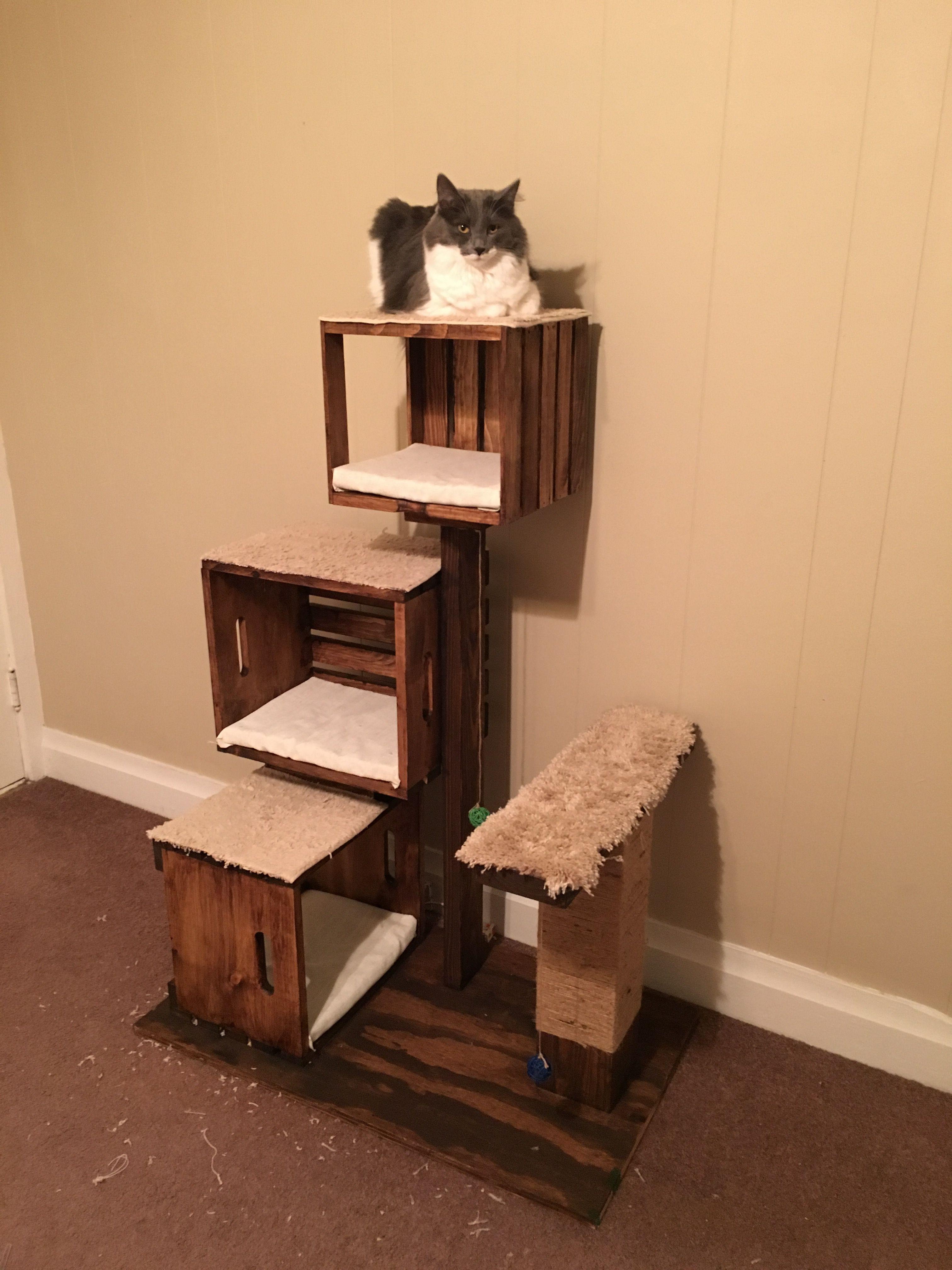 DIY cat tree Tap the link Now Luxury Cat Gear Treat