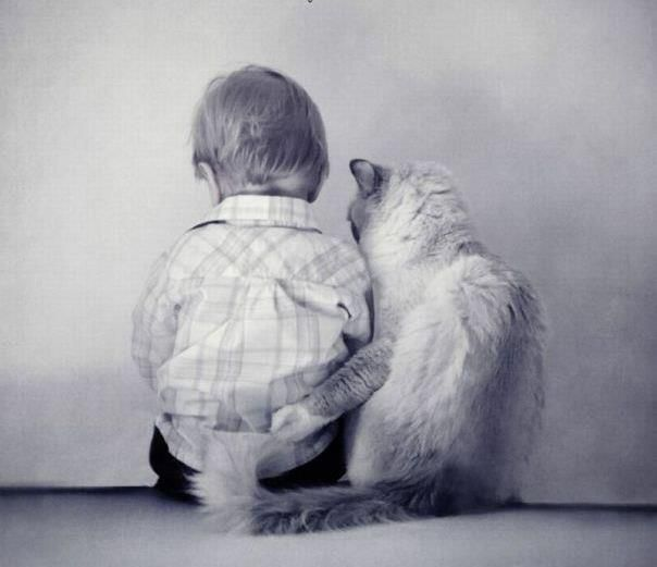 Everything Will Be Okay My Friend.  Babies and kitties!  All is well in our world.  xo
