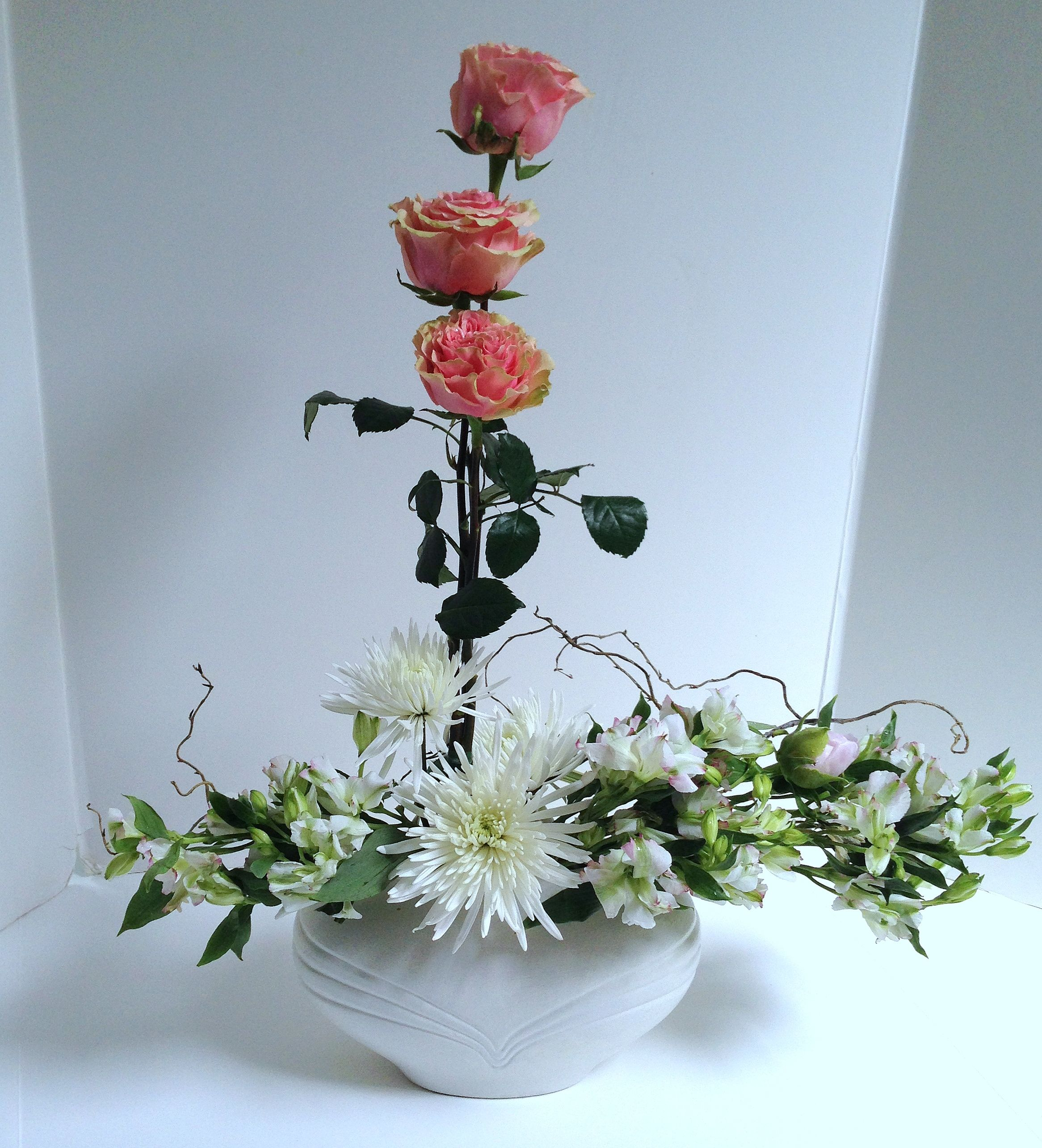 Delicate Garden Roses Stand Tall Over The Bed Of White Flowers In
