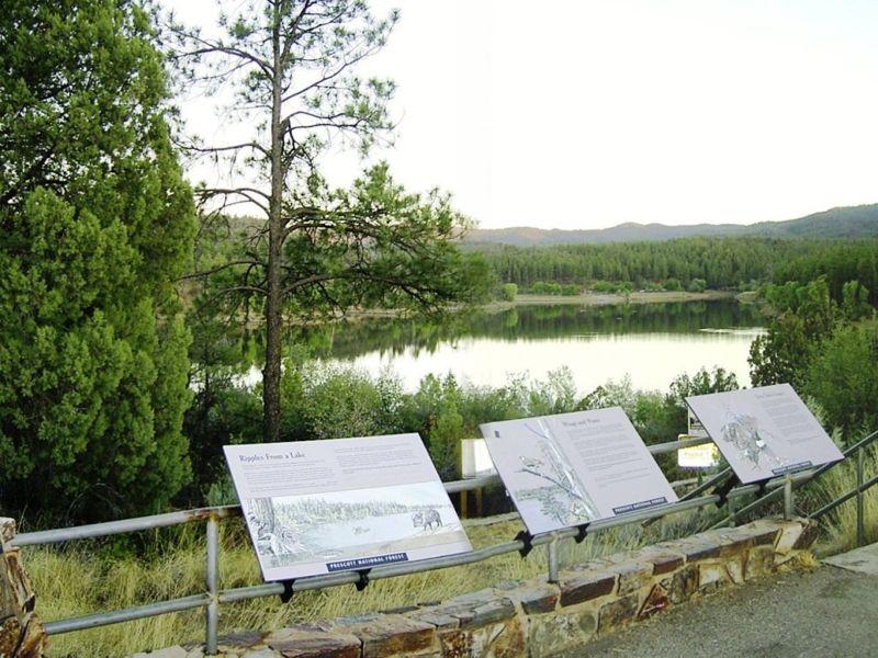 Lynx Lake Recreation Area Prescott Prescott National Forest