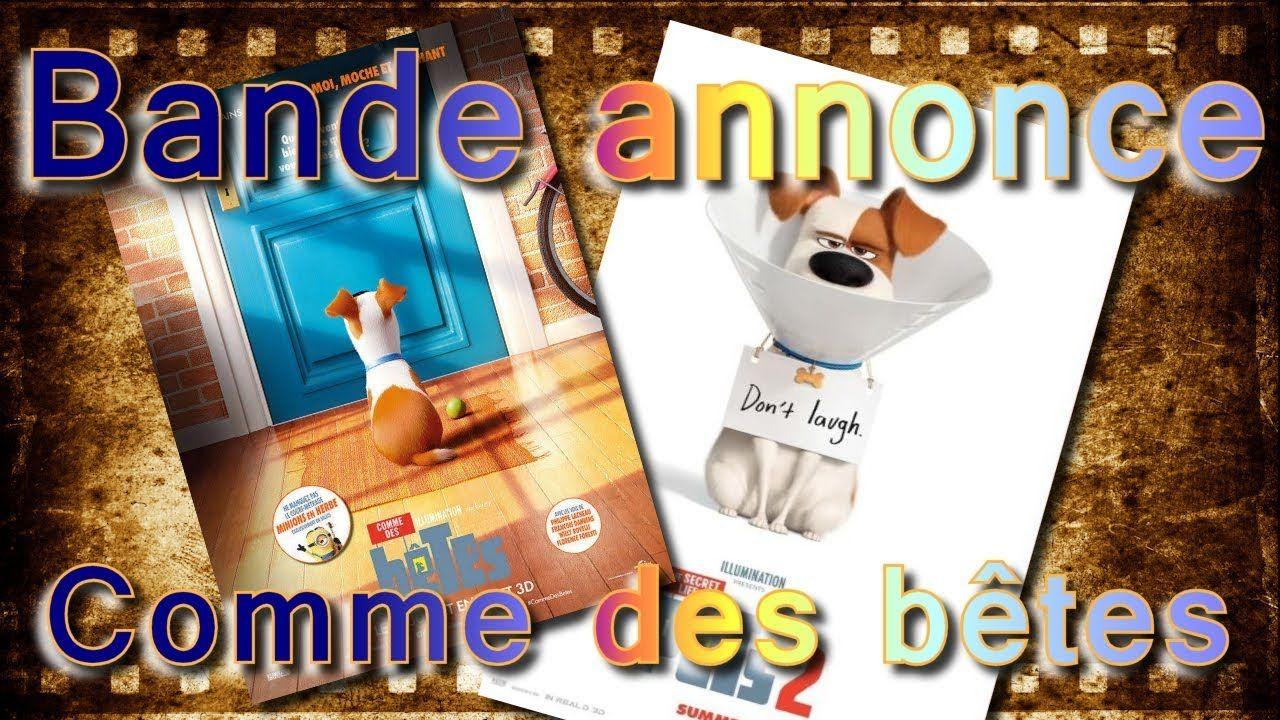 Comme Des Betes Bande Annonce Bande Annonce Comme Des Betes 1 Et 2 Vf Bande Annonce Comme Des