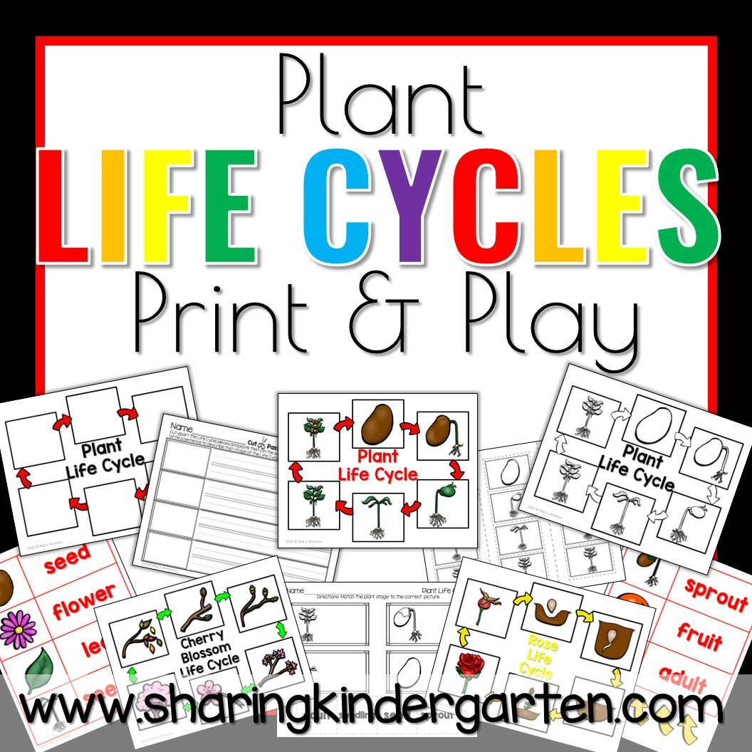 This Apple Life Cycle Clip Art Set Has 22 Images 11 Color 11 Black And White Included Apple Apple Wi Apple Life Cycle Apple Tree Life Cycle Apple Tree
