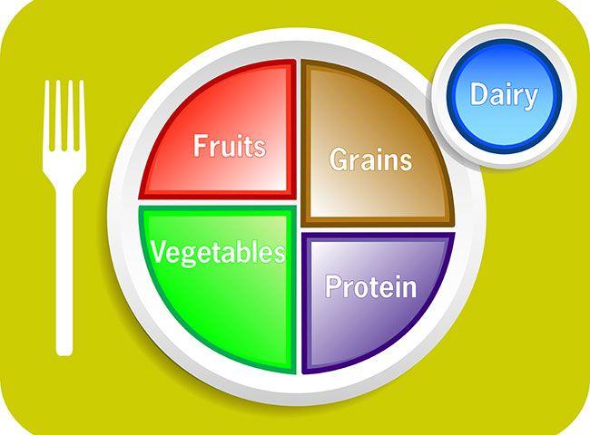 ¿Por qué es tan popular el plato de Harvard como guía nutricional para los niños?