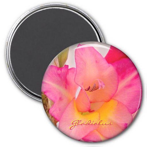 Pink Gladiolus Refrigerator Magnet Refrigerator Magnets #zazzle #organizing #magnets #pink #gladiolus #flowers