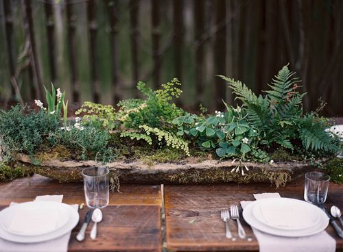 A great rustic idea with moss and ferns on the warm rich wood :)