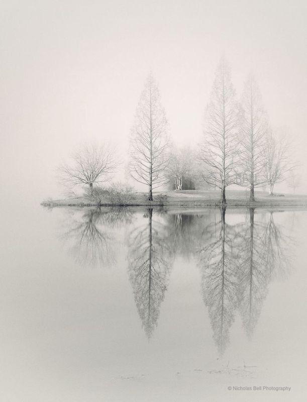 Nebellandschaftsfotografie, Seehauskunst, Seehausdekoration, Nebelfotografie, Kunstlandschaft, Baumfotografie, Winterfotografie #framesandborders