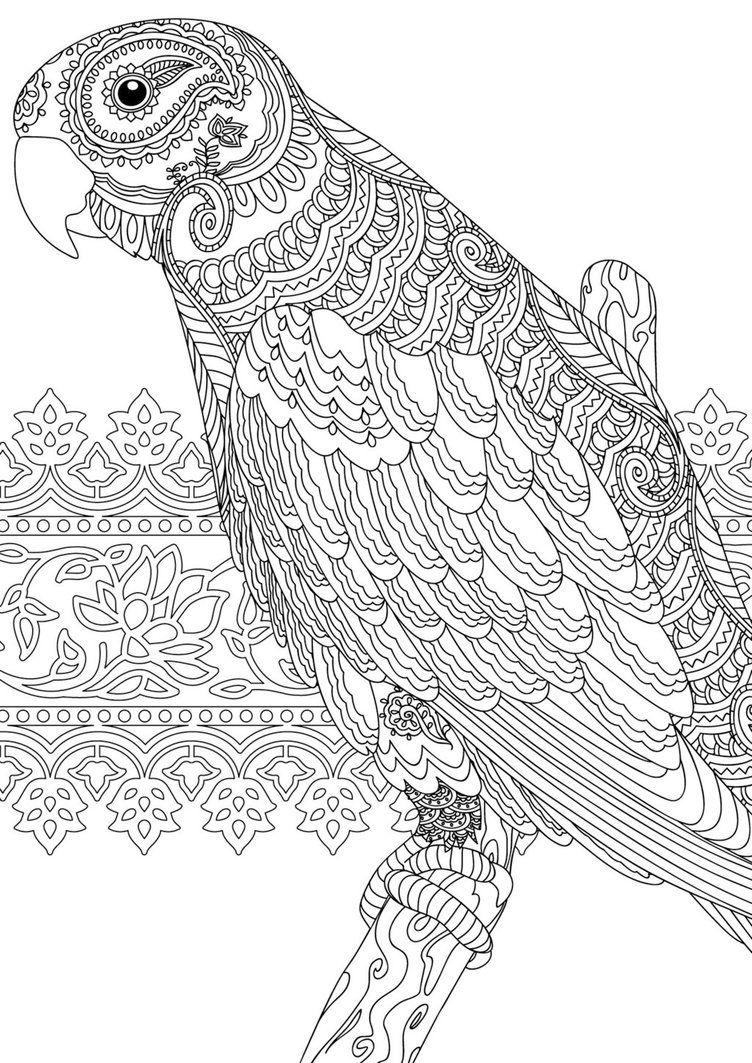 Zentangle Colouring Page For Redan S Calm Colour Create Magazine