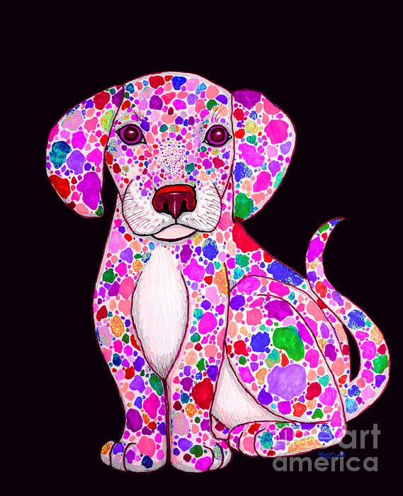 Painted Puppy 3 Drawing
