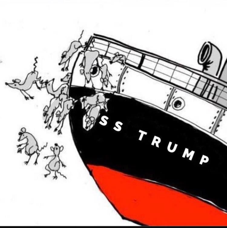 Image result for rats sinking ship