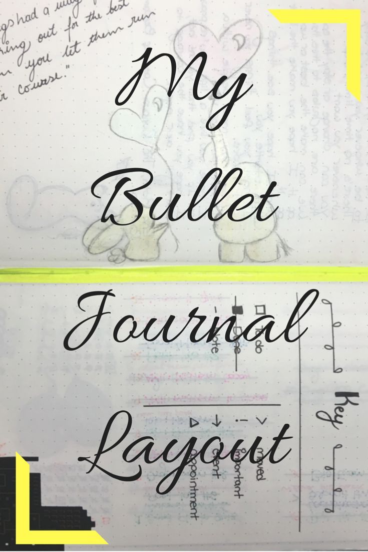 The first layout of my bullet journal.