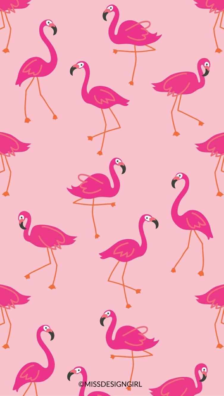 Fine Decor Flamingos Wallpaper FD Wallpaper Allen uk