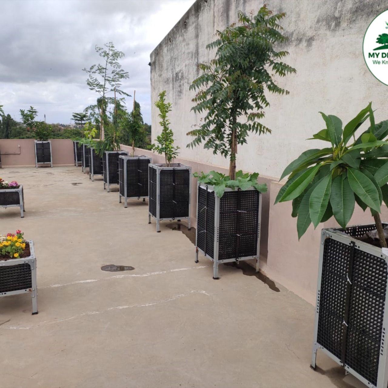 Gi Magic Planter Box Terrace Garden Package Terraced Vegetable Garden Buy Garden Dream Garden