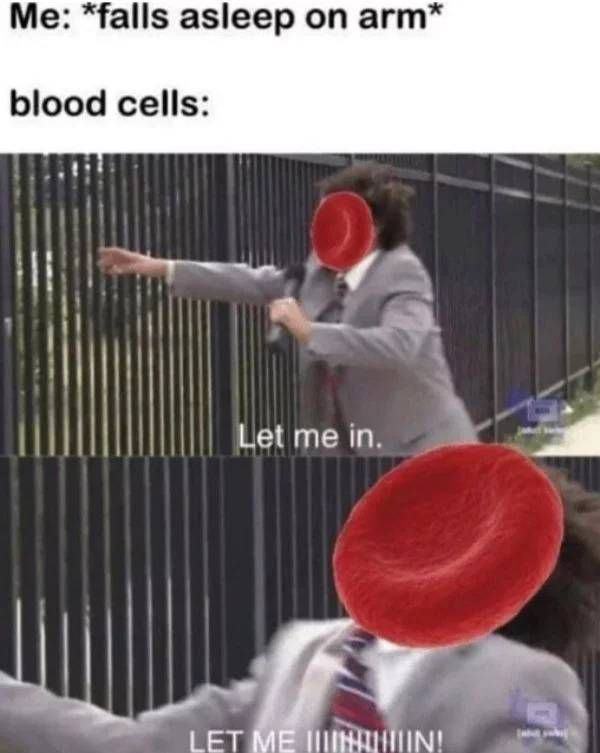 Photo of 46 Science Memes For The Nerds Among Us