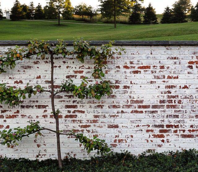 Mortar Washed Brick Love Brick Wall Gardens White Wash Brick Brick Garden