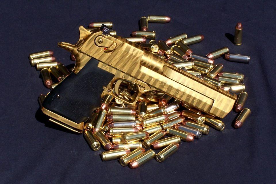 Pin Em Firearms 2nd Amnd