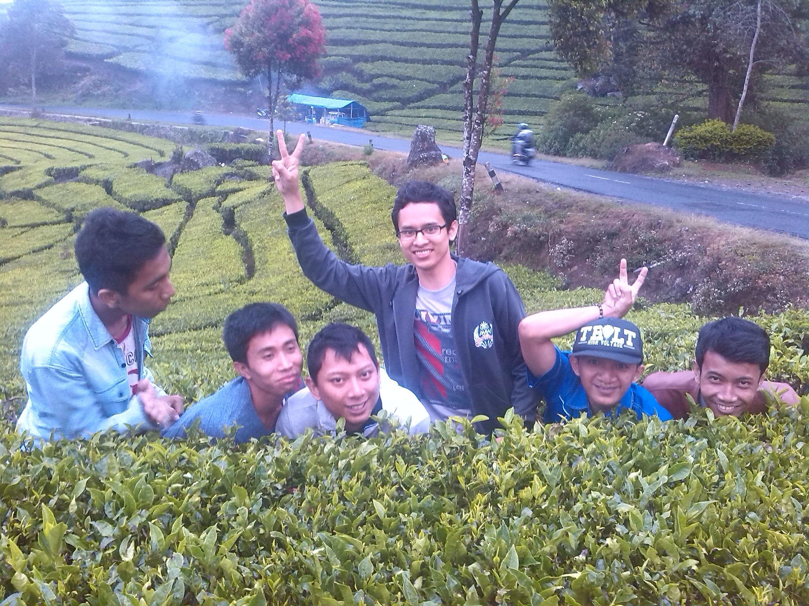 Harga Paket Tour Ciwidey Bandung Update 2018 Stoking Leging Wanita Pentyhouse Apple Sexy Hitam Coklat All Size Muat S L Kawah Putih Merupakan Tempat Wisata Paling Populer Masa Ini Yang