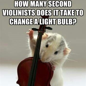 Second Violins Joke With Images Violin Violinists Lessons