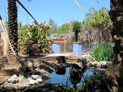 22c0e145e4af126d7492e96a3fd6fa95 - The Florida Botanical Gardens In Largo