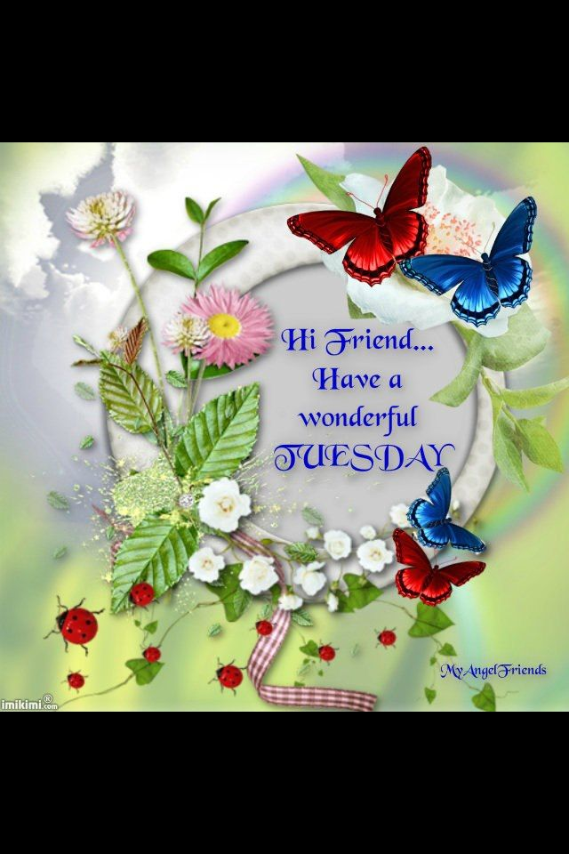 happy tuesday greeting pinterest tuesday have a wonderful tuesday m4hsunfo