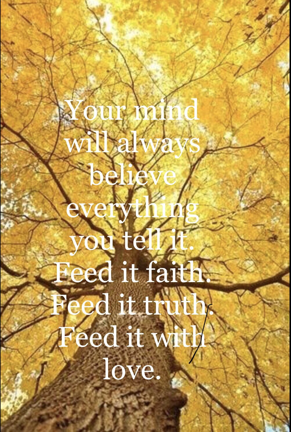 Believe, faith, truth! Happy Sunday ❤️ #fun #findyourpassion #life