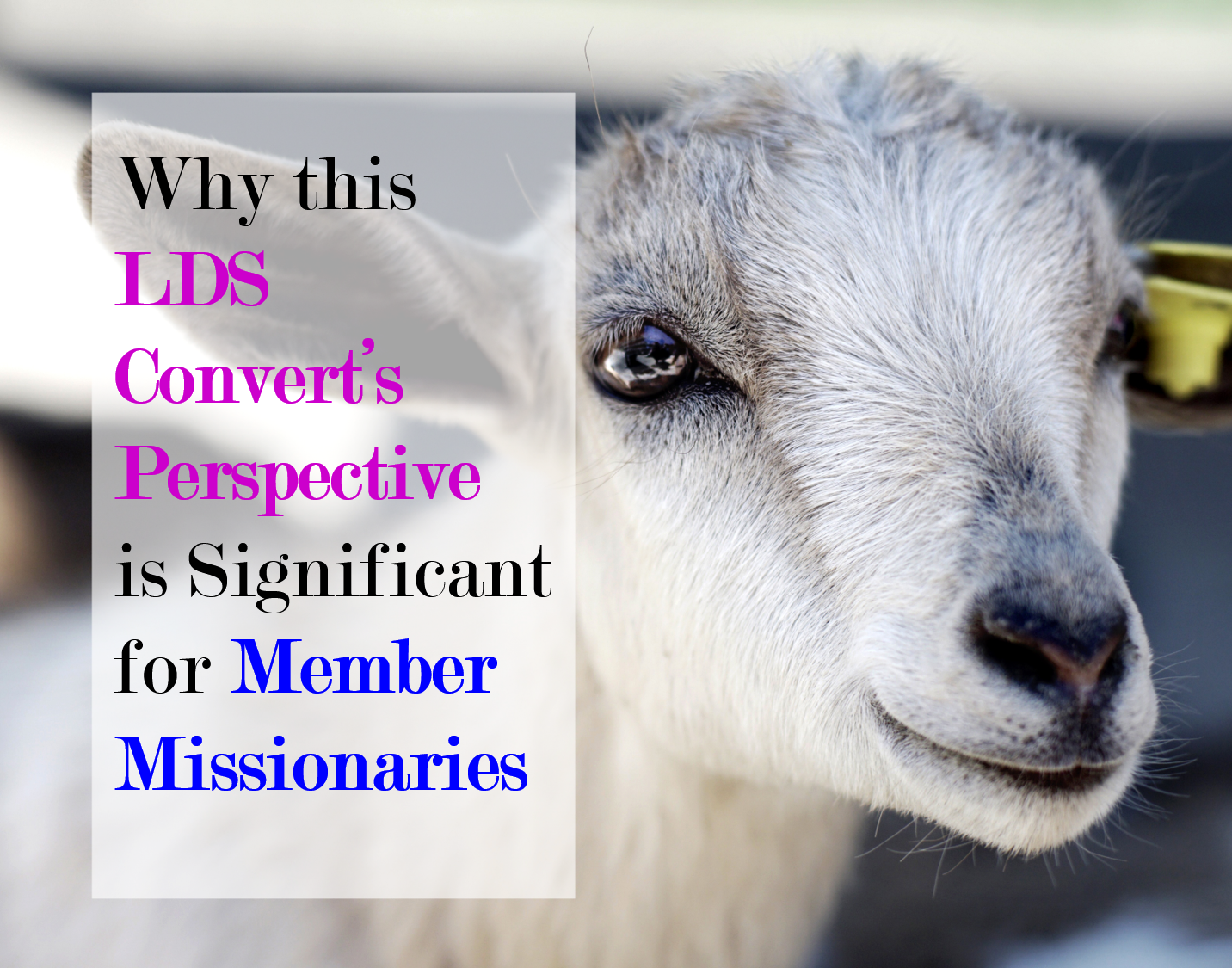 Why I Created this Blog   Missionary work, About me blog ...
