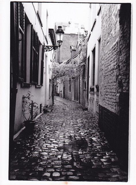Ooievaarstraat - Rue de la Cigogne © Maxim Van den Bossche