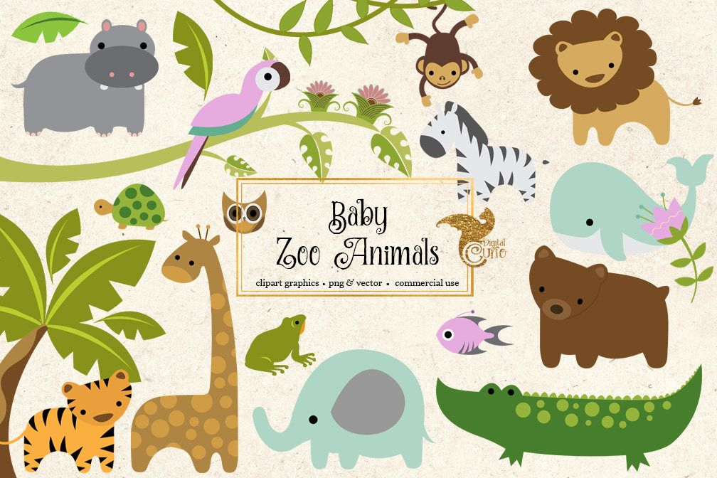 Baby Zoo Animals Clipart Png And Vector Clip Art Set Etsy Illyustracii Kartinki Risunki