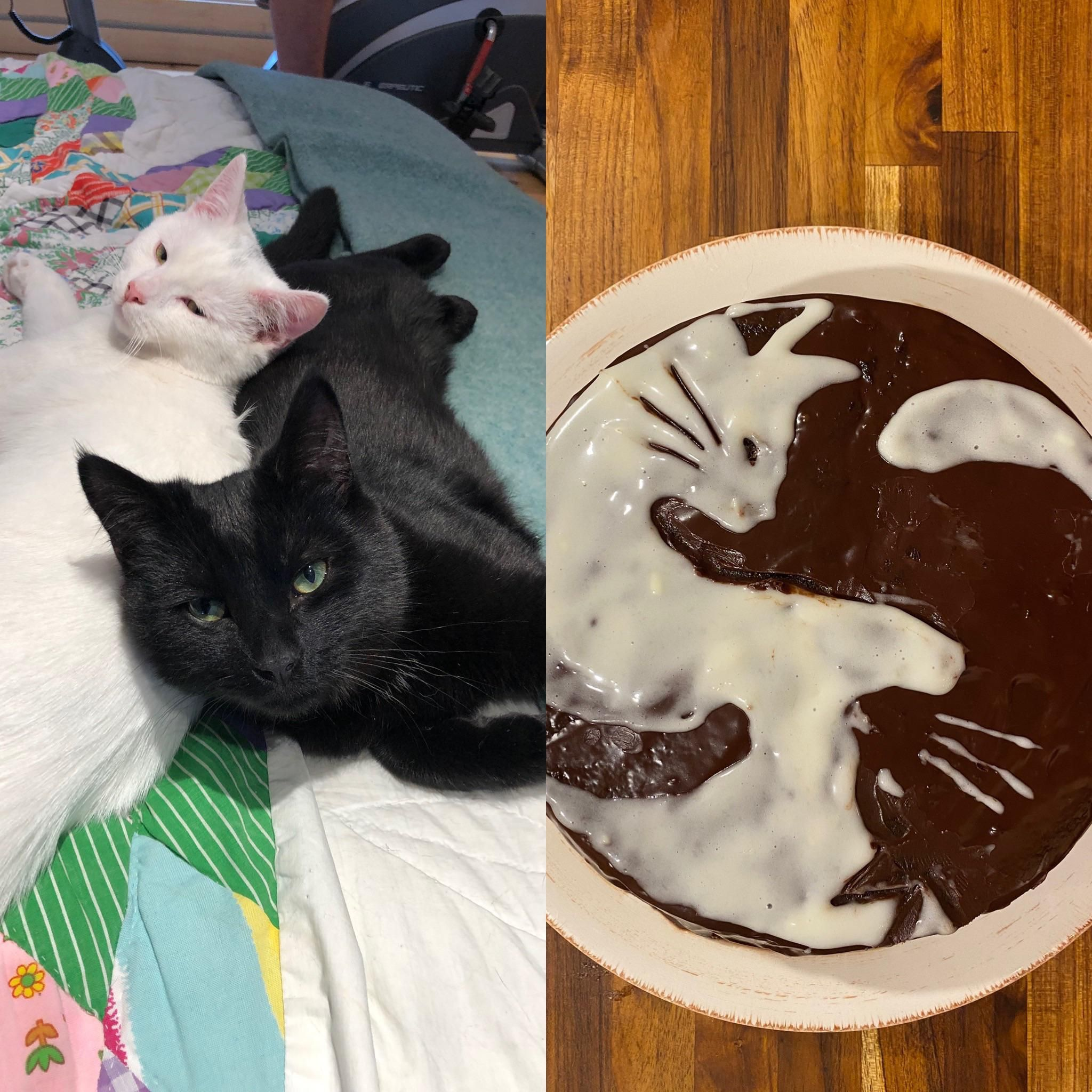 Real Estate Marketing Reviews The Ying Yang Twins Had A Birthday And This Is Their Birthday Cake In 2020 Ying Yang Twins Ying Yang Cuteness Overload