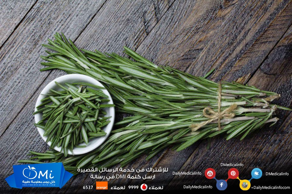 أثبتت الأبحاث مؤخرا أن رائحة الروزماري تساعد علي تحسين المزاج ورفع الحالة المعنوية ماذا تسمى في بلدك صحة فوائد Food To Make Asparagus Green Beans