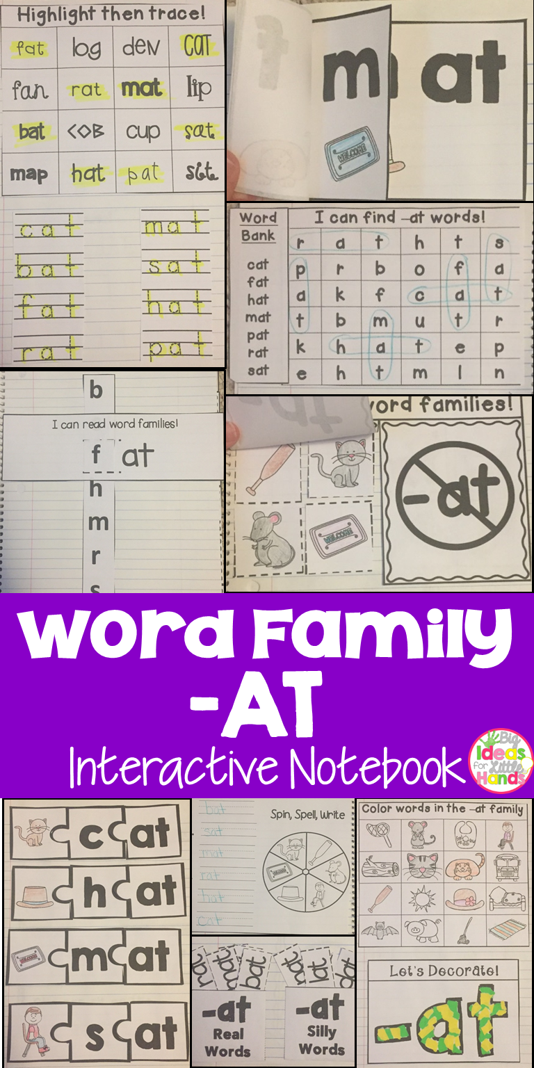 AT Word Family Interactive Notebook Word search Activities and