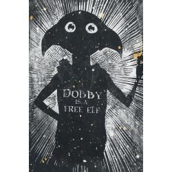 Photo of Harry Potter Dobby Is A Free T-Shirt