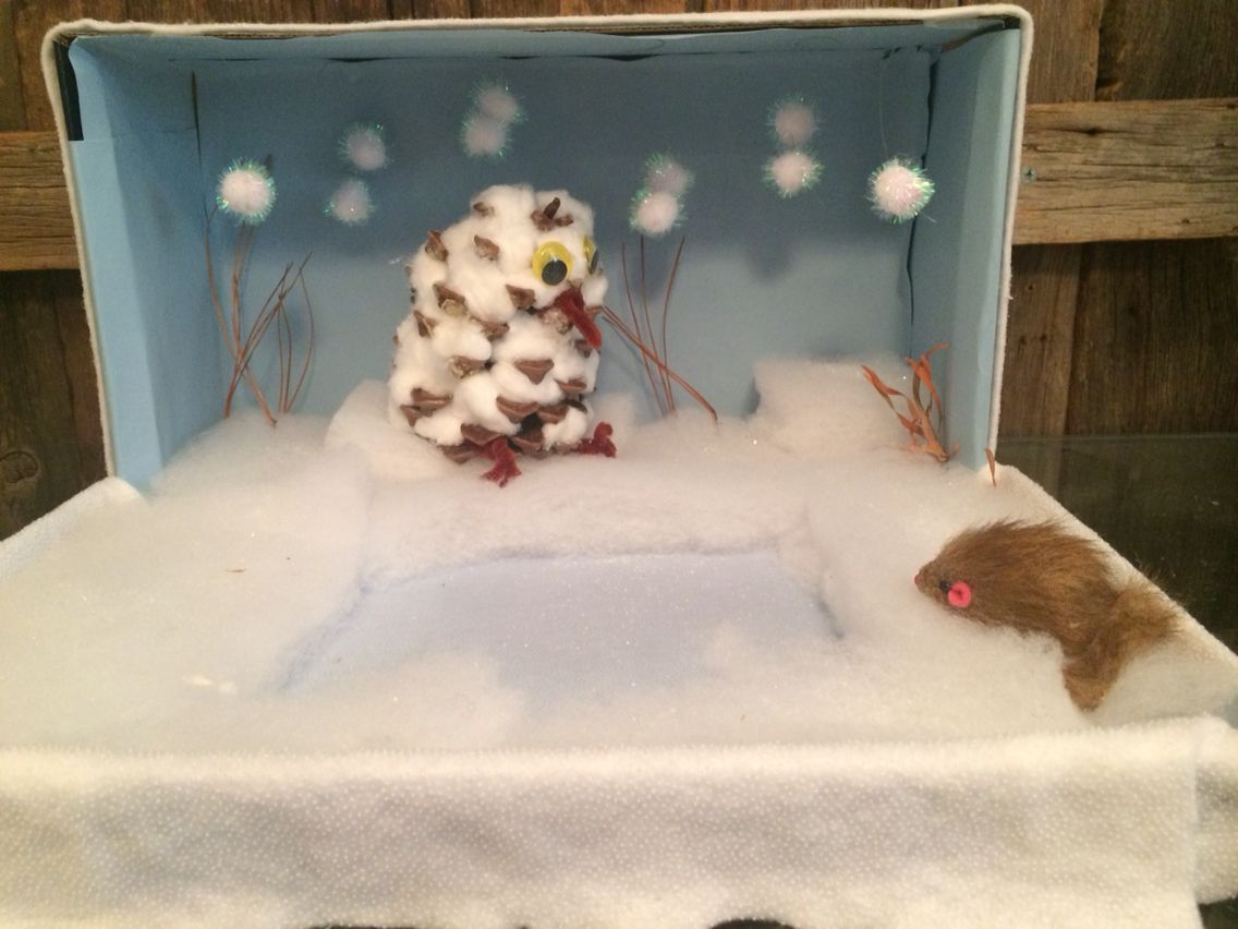 snowy owl diorama by simone jackson kids pinterest snowy owl