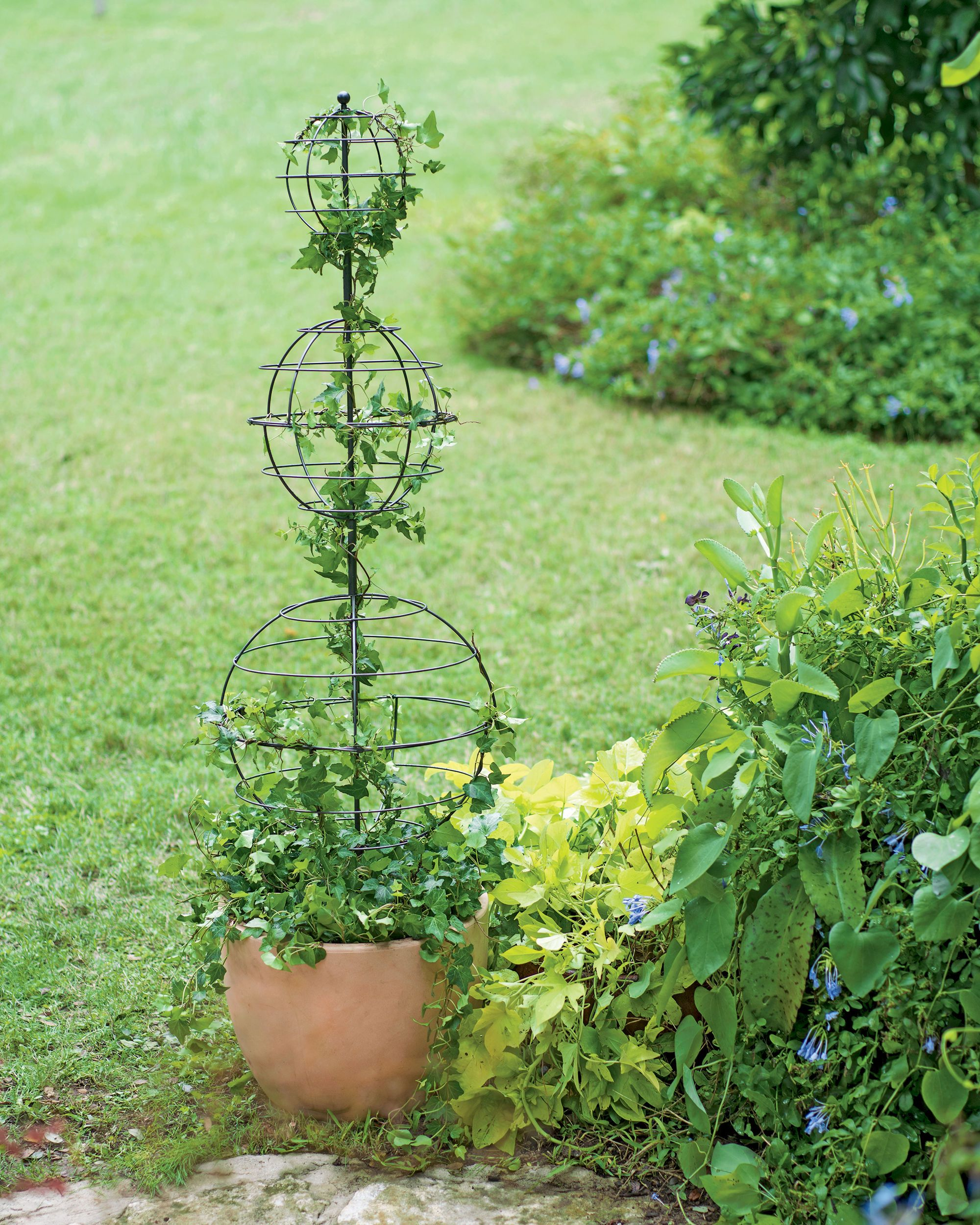 Twist Topiary Frame - Topiary Forms - Spiral Topiary Wire Frame ...
