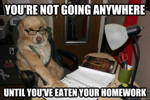 Funny Memes For Dads : Disapproving dad dog teehee pinterest homework dads and meme