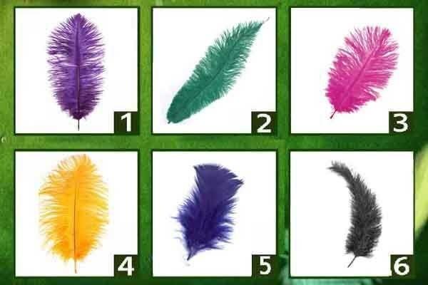 El test de las plumas