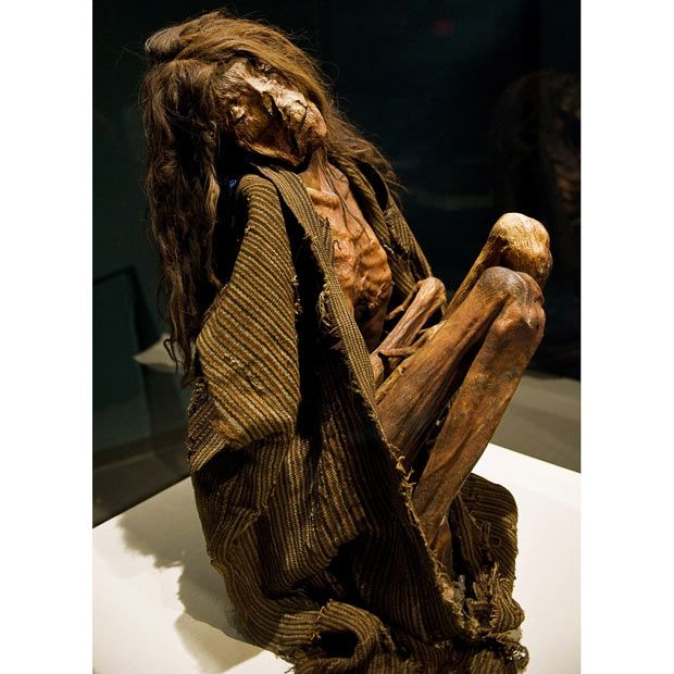 Mummies Of The World: An Exhibition At The California