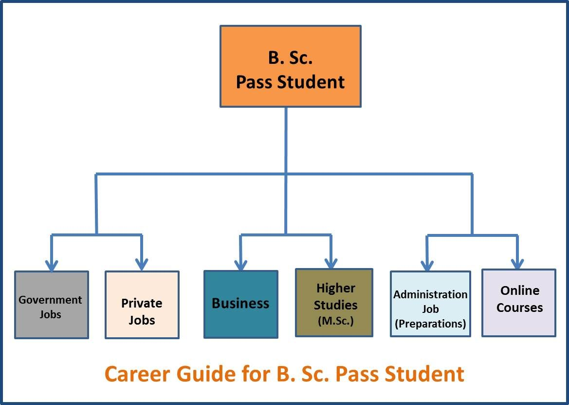 Career Guide Bsc Pass Student Flow Chart Business Administration Jobs Career Career Path