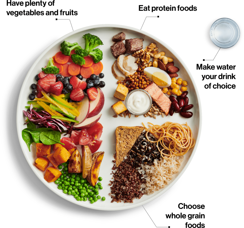 Canada Food Guide Plate My Healthy Dish Recipe Canada Food Guide Food Healthy Dishes