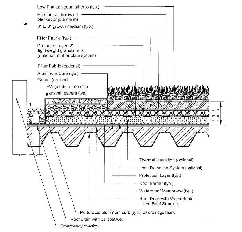 Cross Section Of Extensive Vegetated Roof Source Vdcr Stormwater Design Specification Number 5 Vegetated Roof Green Roof Design Green Roof Vegetated Roofs