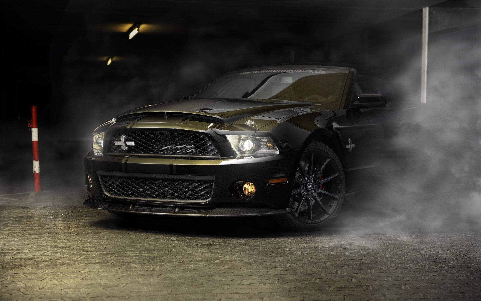 Mustang Looks At Its Best When Dressed in Carbon Fiber! If you ever ...