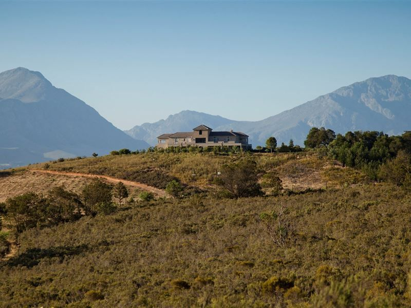 Guinevere Guest Farm - The Guinevere Guest Farm luxury self-catering farm house in Tulbagh, is located in the historic Land van Waveren Valley and is the ideal self-catering accommodation for a private group seeking luxury and ... #weekendgetaways #tulbagh #southafrica