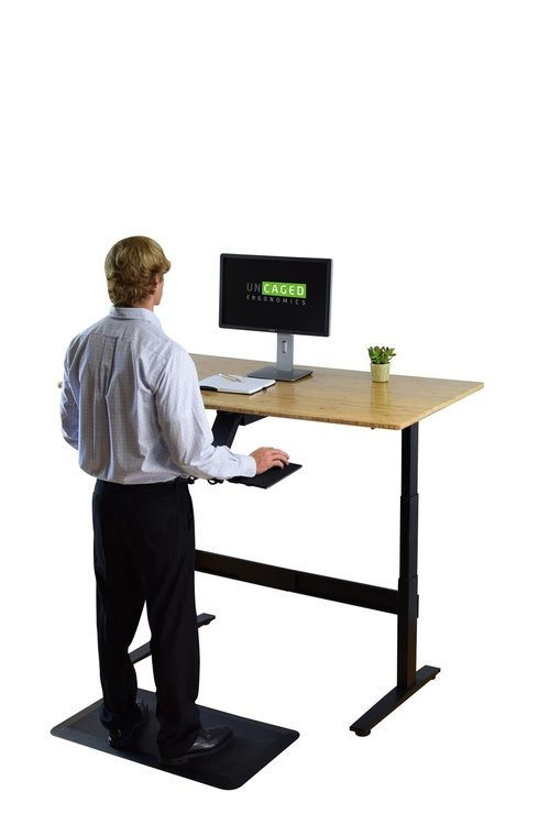 Rise Up Electric Adjustable Height Standing Desk Stand Up To The