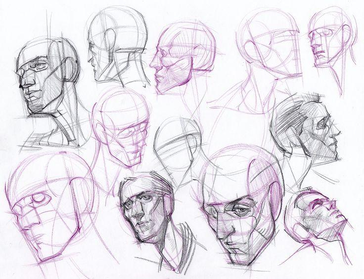 Construccion Cabeza Dibujo Anatomia Humana Arte De Anatomia Humana Dibujos Figura Humana