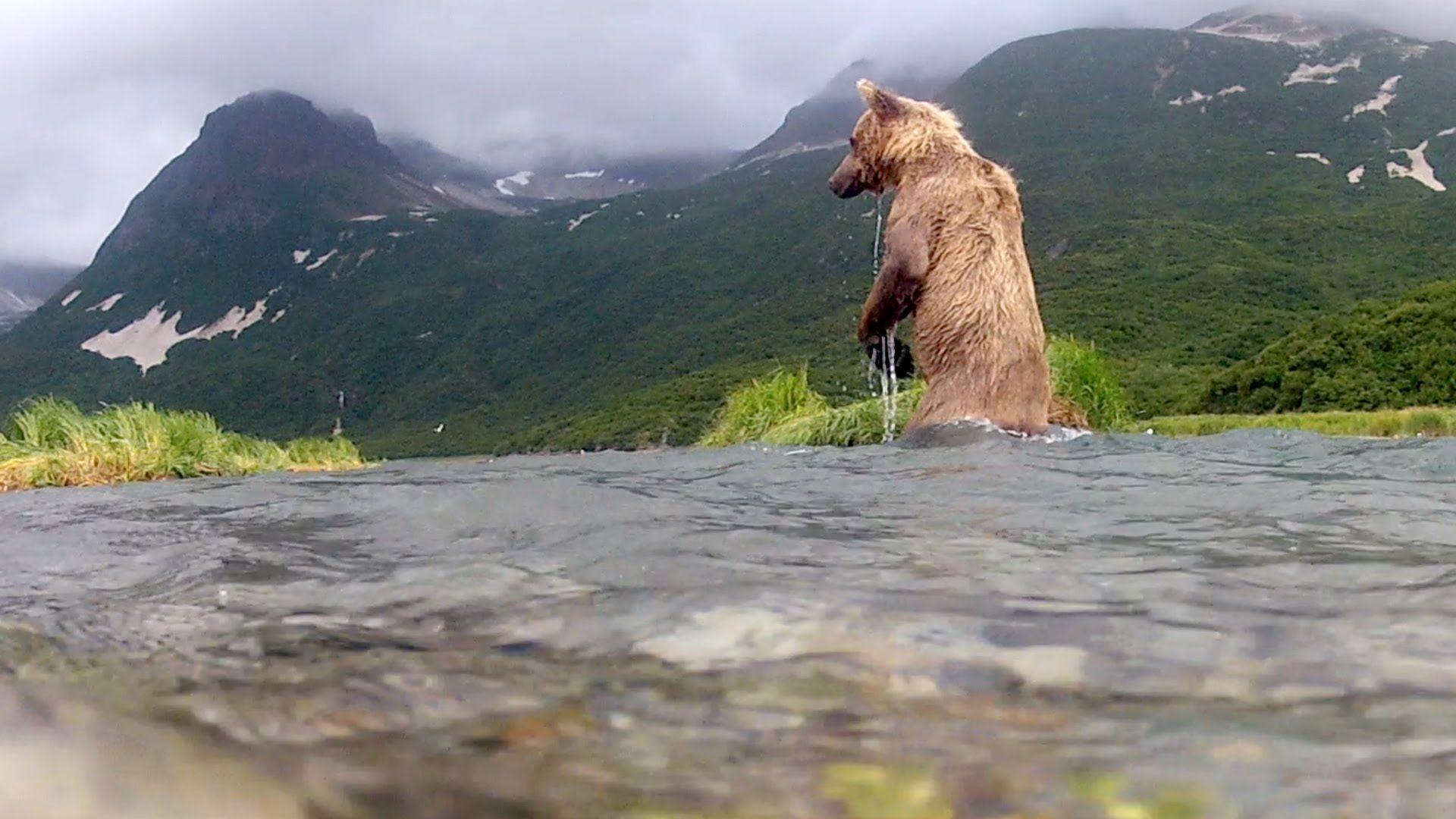 Viel leckerer als der Fisch, diese GoPro!