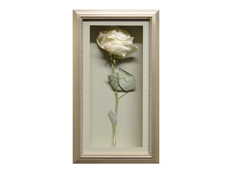 How To Preserve A Single Rose Into A Cherished Memorial Keepsake See What Fantastic Blooms Can He Memorial Flowers How To Preserve Flowers Floral Preservation